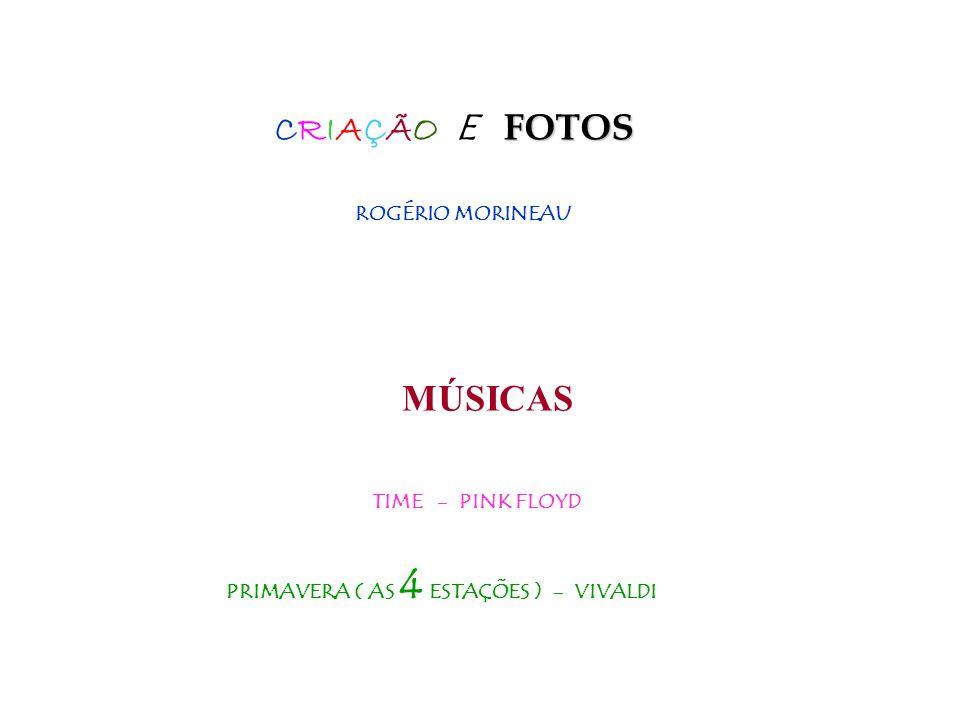 CRIAÇÃO E FOTOS MÚSICAS ROGÉRIO MORINEAU TIME - PINK FLOYD