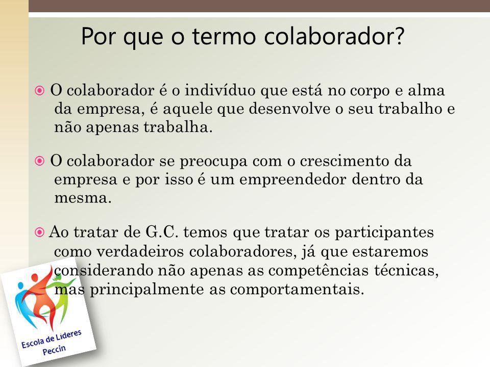 Por que o termo colaborador