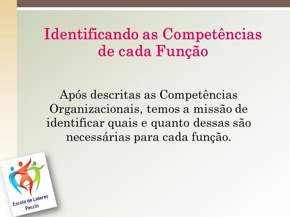 Identificando as Competências de cada Função