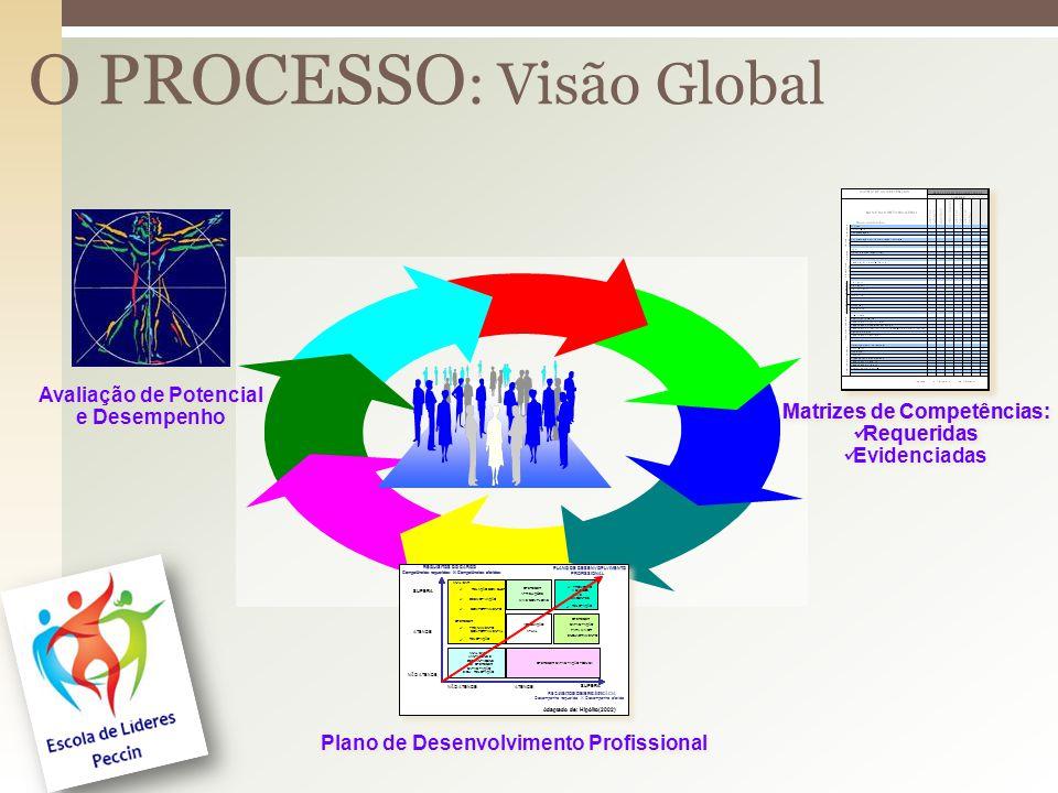 O PROCESSO: Visão Global