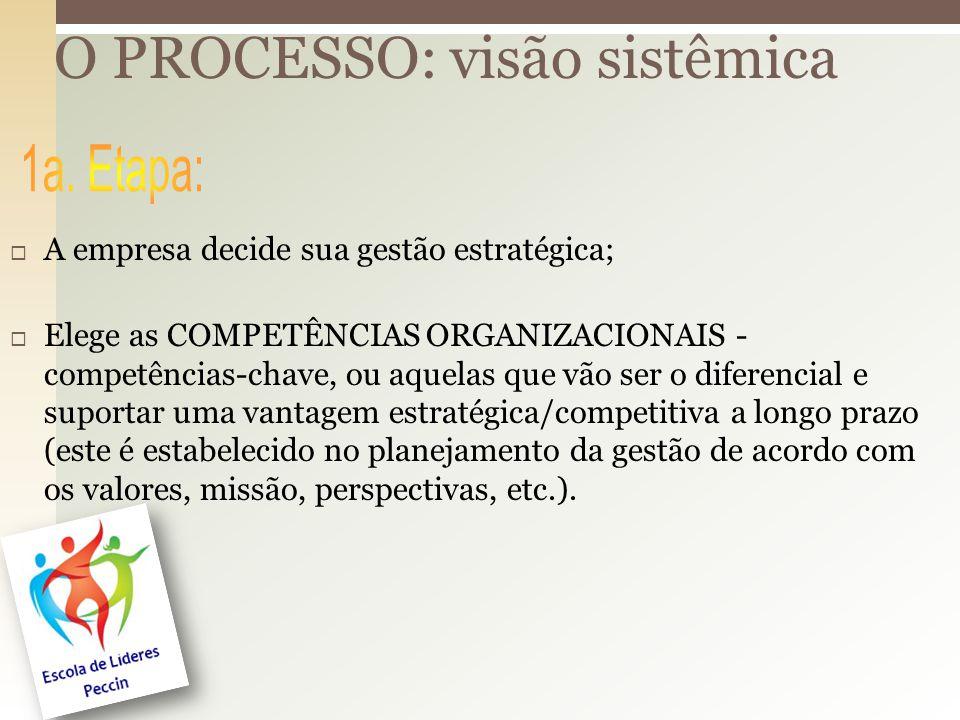 O PROCESSO: visão sistêmica