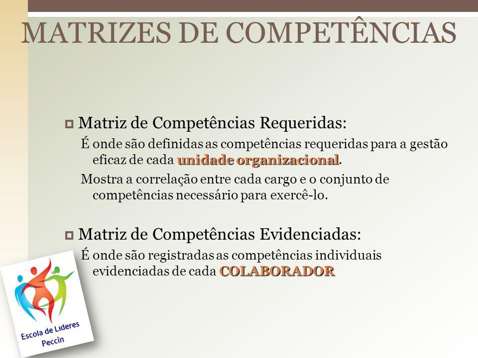 MATRIZES DE COMPETÊNCIAS