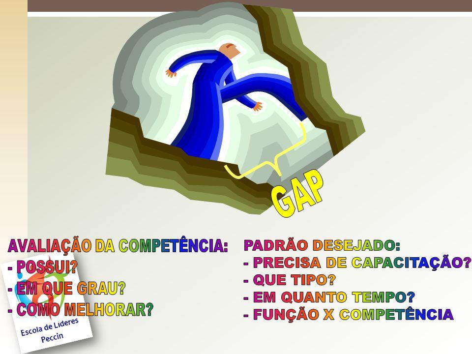 GAP AVALIAÇÃO DA COMPETÊNCIA: PADRÃO DESEJADO: - POSSUI