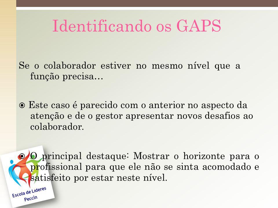 Identificando os GAPS Se o colaborador estiver no mesmo nível que a função precisa…