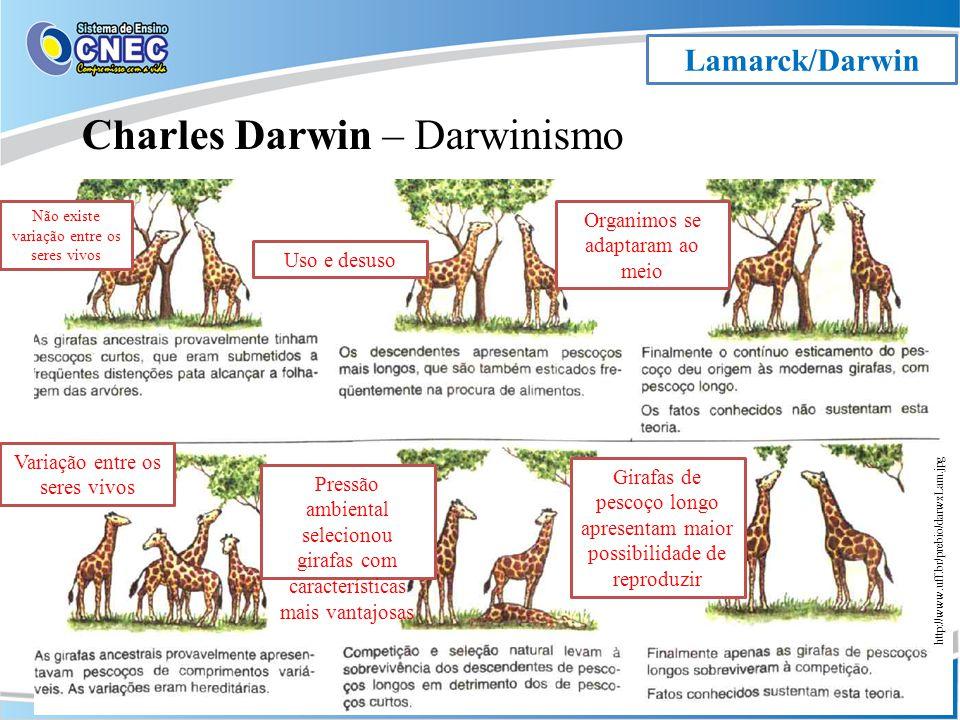 Charles Darwin – Darwinismo
