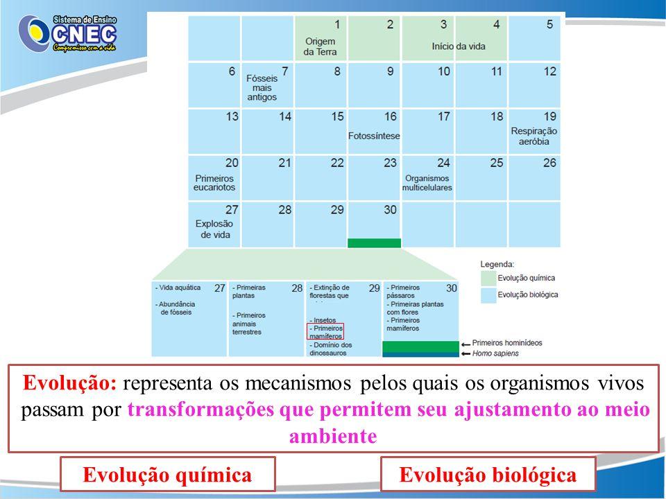 Evolução: representa os mecanismos pelos quais os organismos vivos