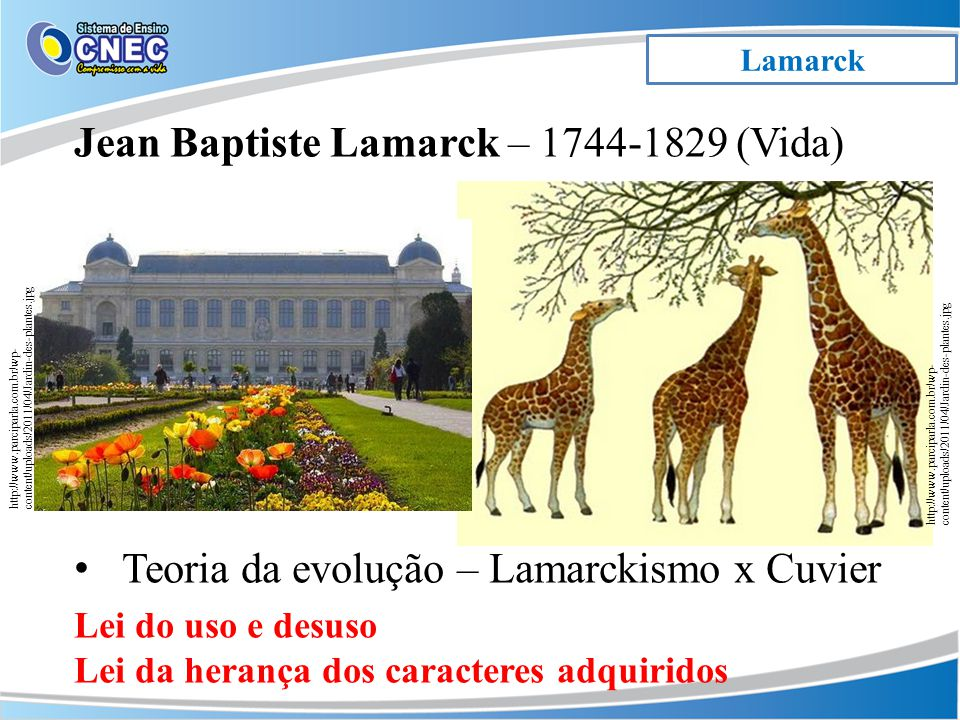 Jean Baptiste Lamarck – 1744-1829 (Vida)