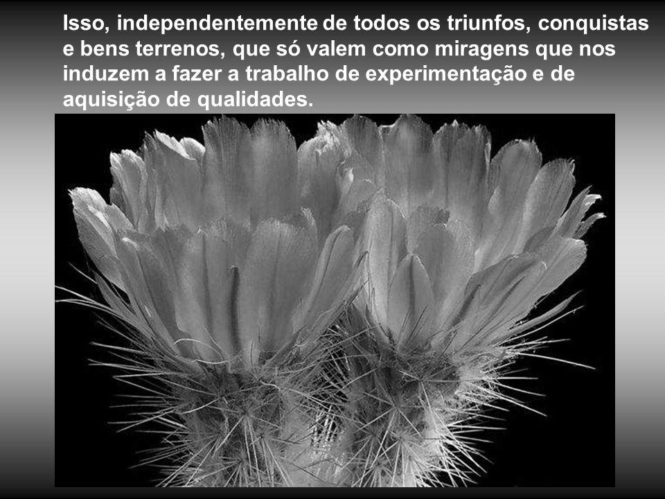 Isso, independentemente de todos os triunfos, conquistas e bens terrenos, que só valem como miragens que nos induzem a fazer a trabalho de experimentação e de aquisição de qualidades.