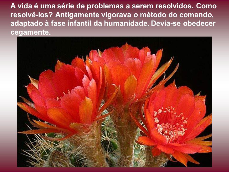 A vida é uma série de problemas a serem resolvidos. Como resolvê-los