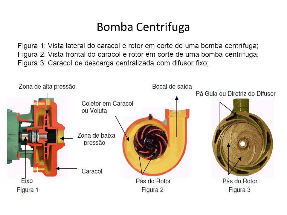 Bomba Centrifuga Figura 1: Vista lateral do caracol e rotor em corte de uma bomba centrífuga;