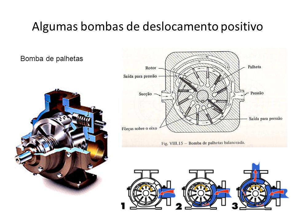 Algumas bombas de deslocamento positivo