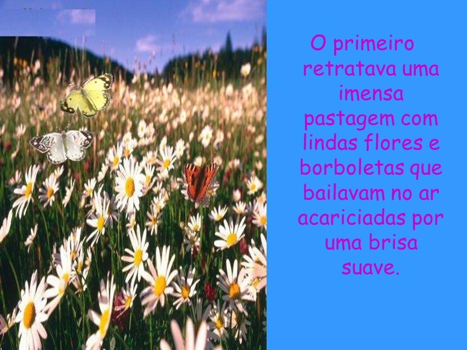 O primeiro retratava uma imensa pastagem com lindas flores e borboletas que bailavam no ar acariciadas por uma brisa suave.