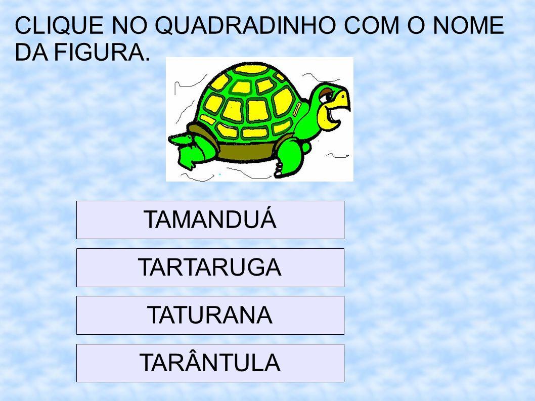 CLIQUE NO QUADRADINHO COM O NOME DA FIGURA.