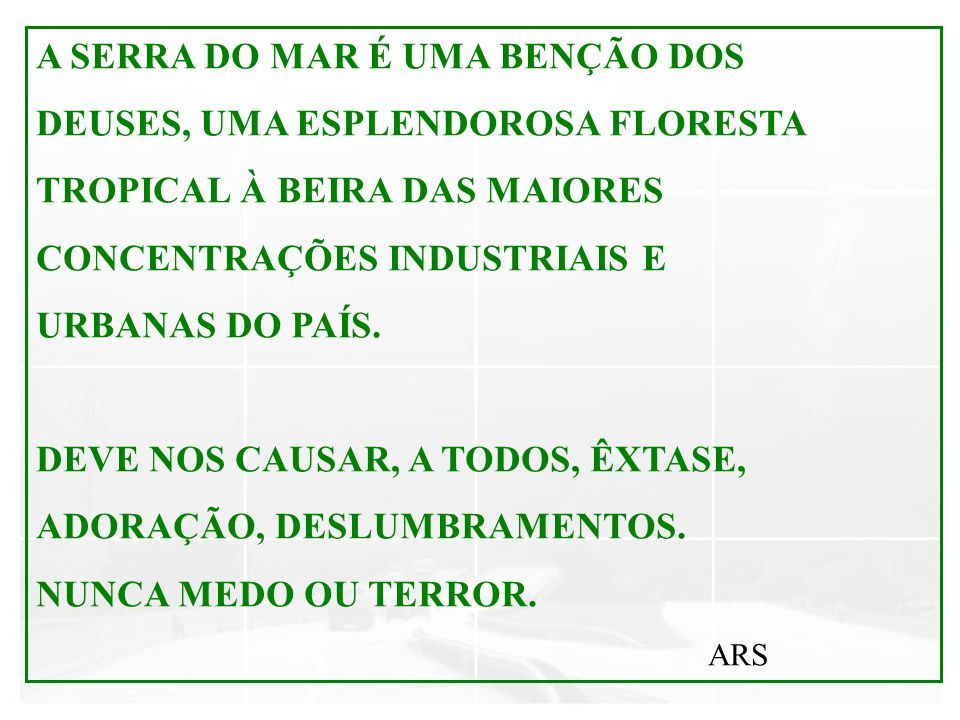 A SERRA DO MAR É UMA BENÇÃO DOS DEUSES, UMA ESPLENDOROSA FLORESTA