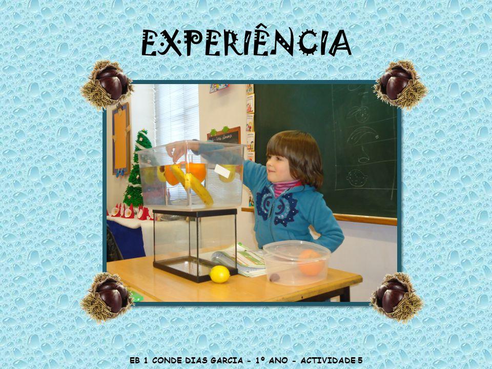 EB 1 CONDE DIAS GARCIA - 1º ANO - ACTIVIDADE 5