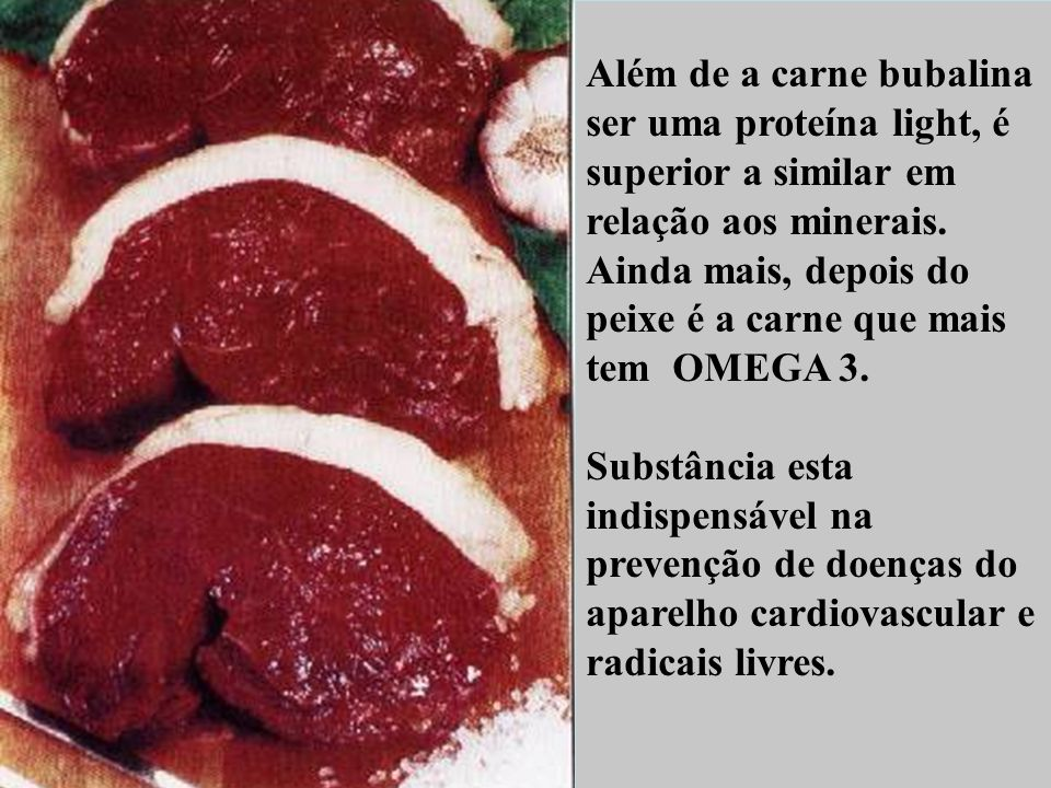 Além de a carne bubalina ser uma proteína light, é superior a similar em relação aos minerais. Ainda mais, depois do peixe é a carne que mais tem OMEGA 3.