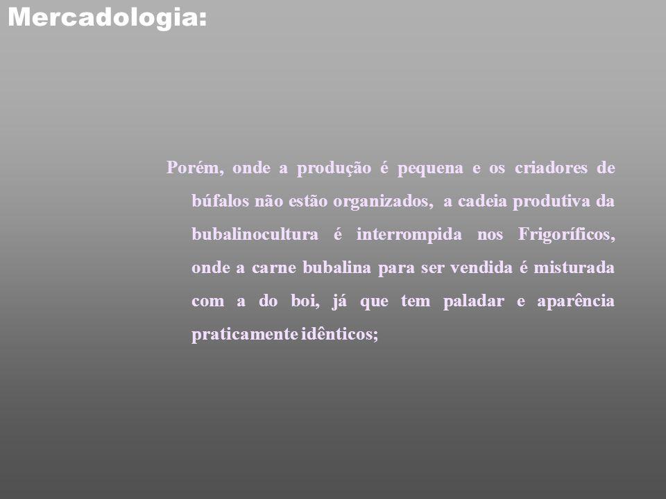 Mercadologia: