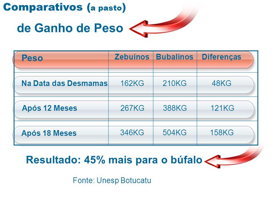 Resultado: 45% mais para o búfalo