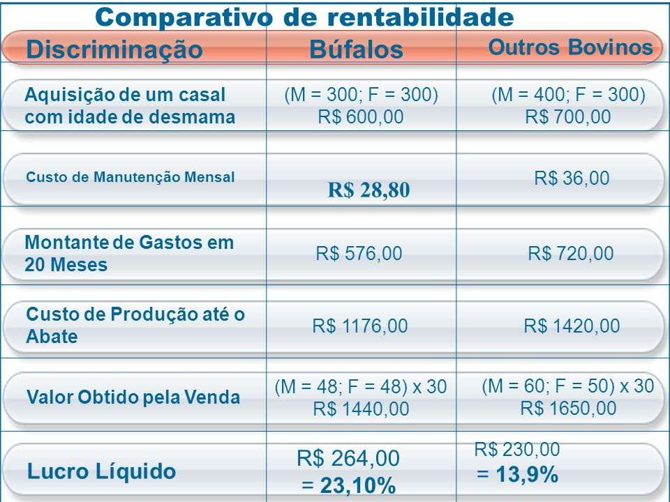 Comparativo de rentabilidade Discriminação Búfalos