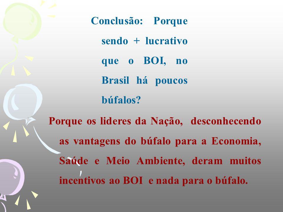Conclusão: Porque sendo + lucrativo que o BOI, no Brasil há poucos búfalos