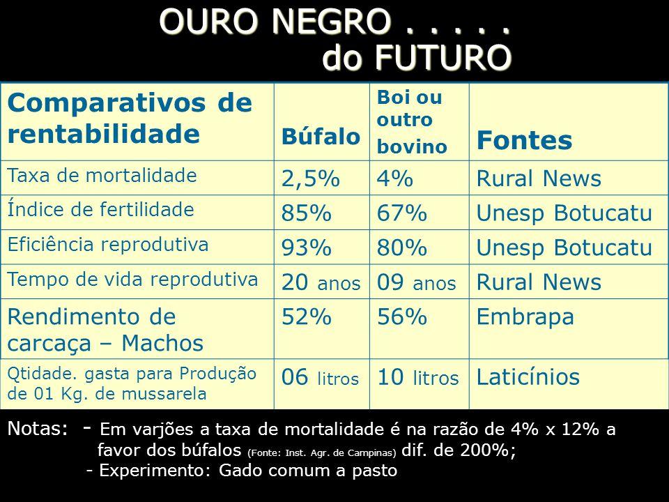 OURO NEGRO . . . . . do FUTURO Comparativos de rentabilidade Fontes