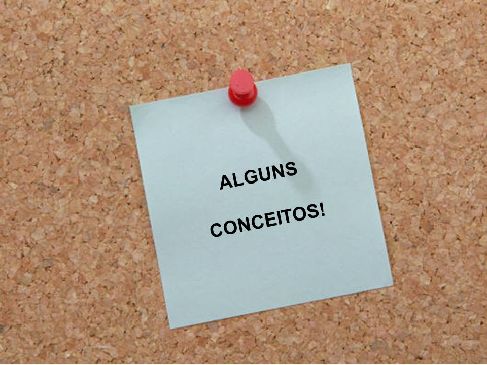 ALGUNS CONCEITOS!