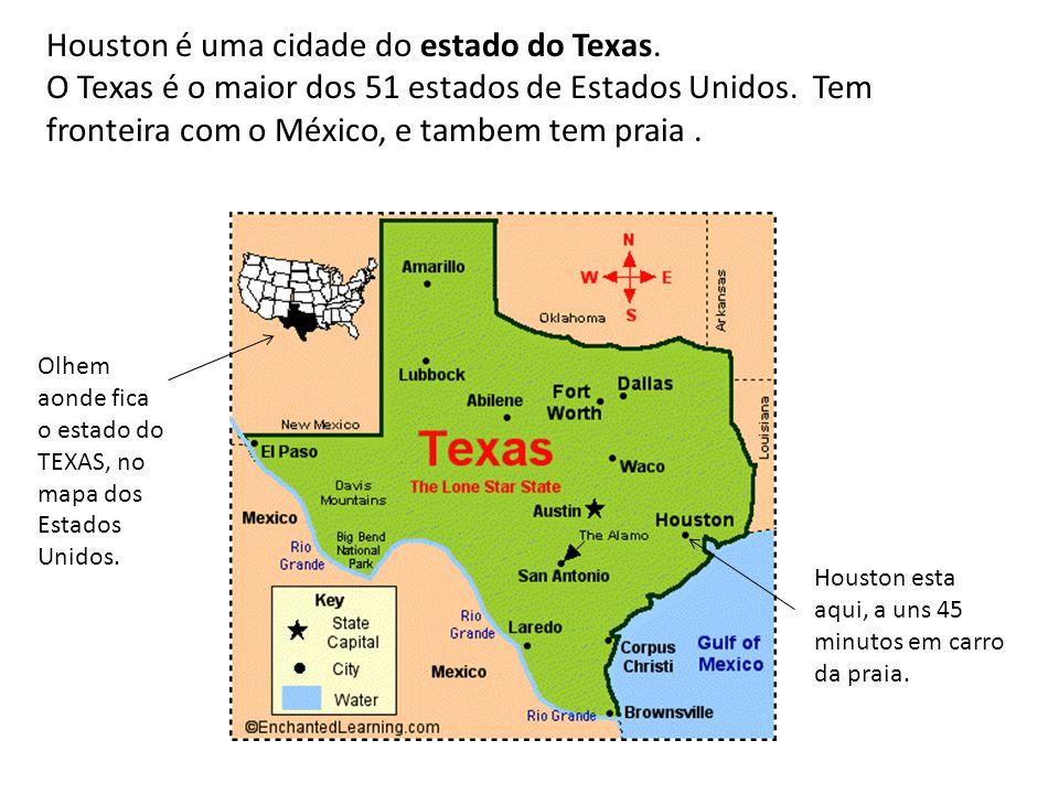 Houston é uma cidade do estado do Texas.
