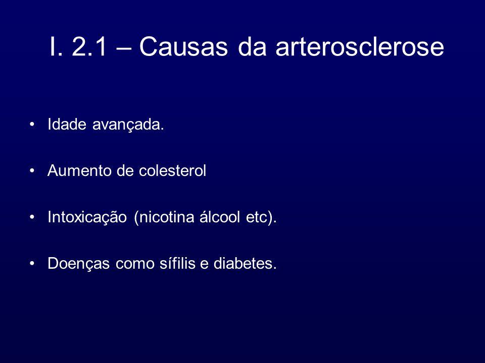 I. 2.1 – Causas da arterosclerose