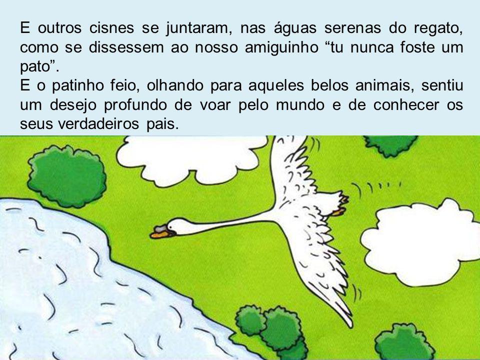 E outros cisnes se juntaram, nas águas serenas do regato, como se dissessem ao nosso amiguinho tu nunca foste um pato .