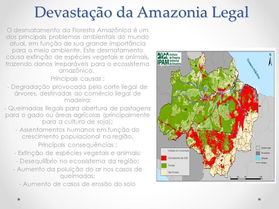Devastação da Amazonia Legal