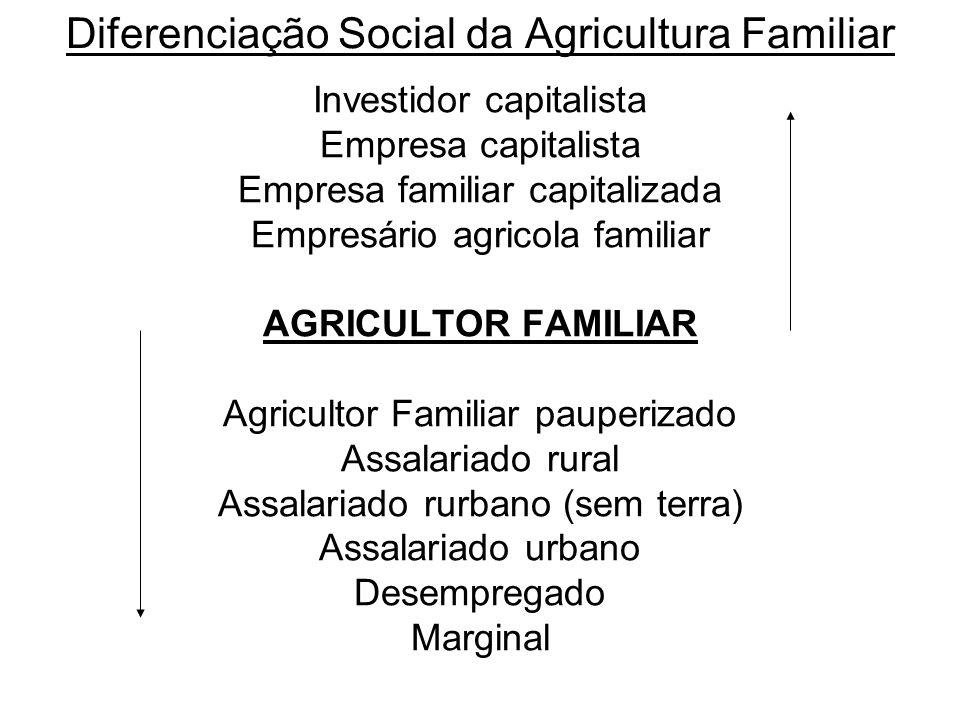Diferenciação Social da Agricultura Familiar