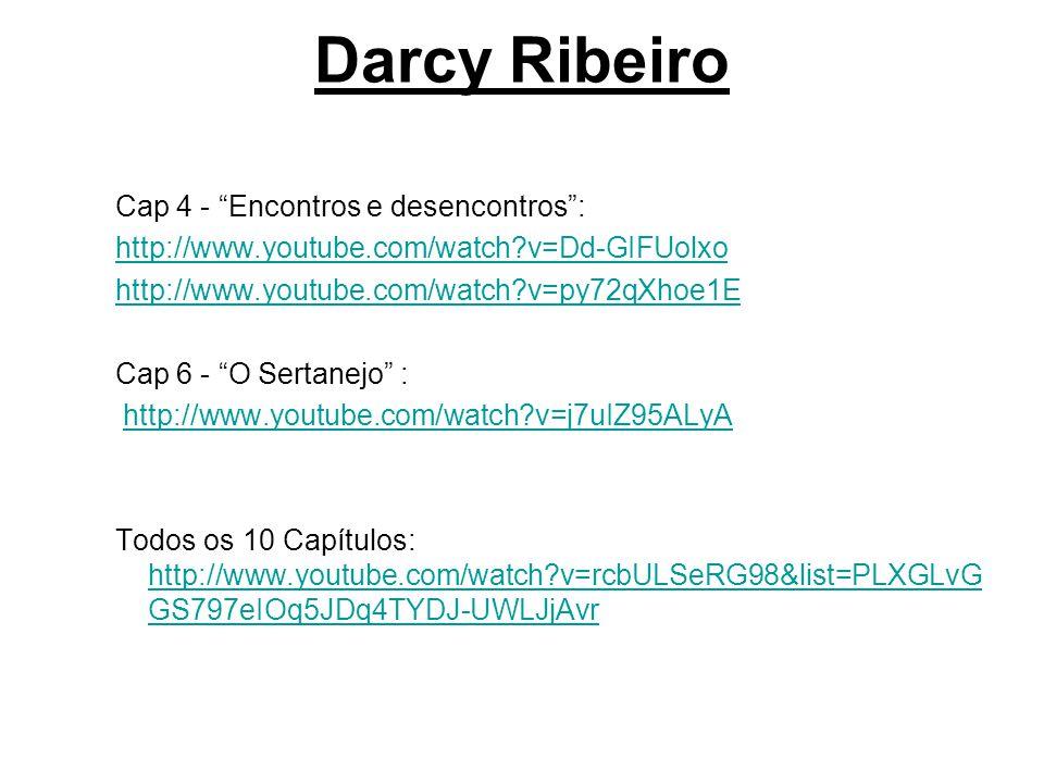 Darcy Ribeiro Cap 4 - Encontros e desencontros :