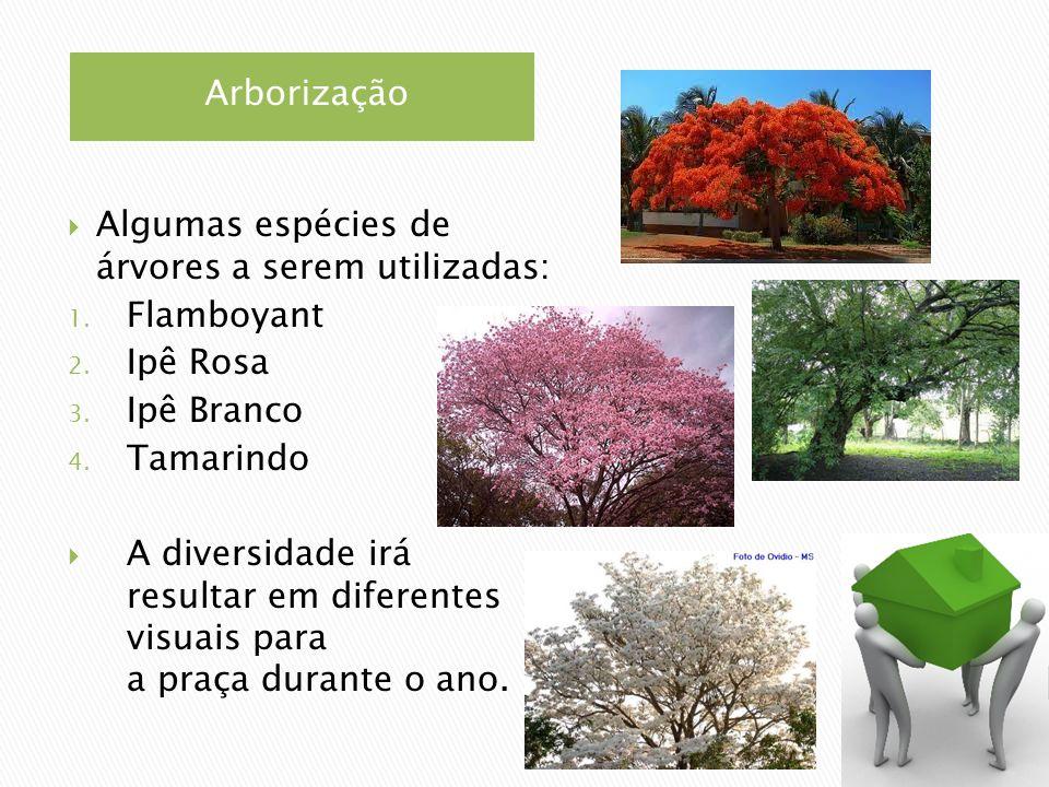 Arborização Algumas espécies de árvores a serem utilizadas: Flamboyant. Ipê Rosa. Ipê Branco. Tamarindo.