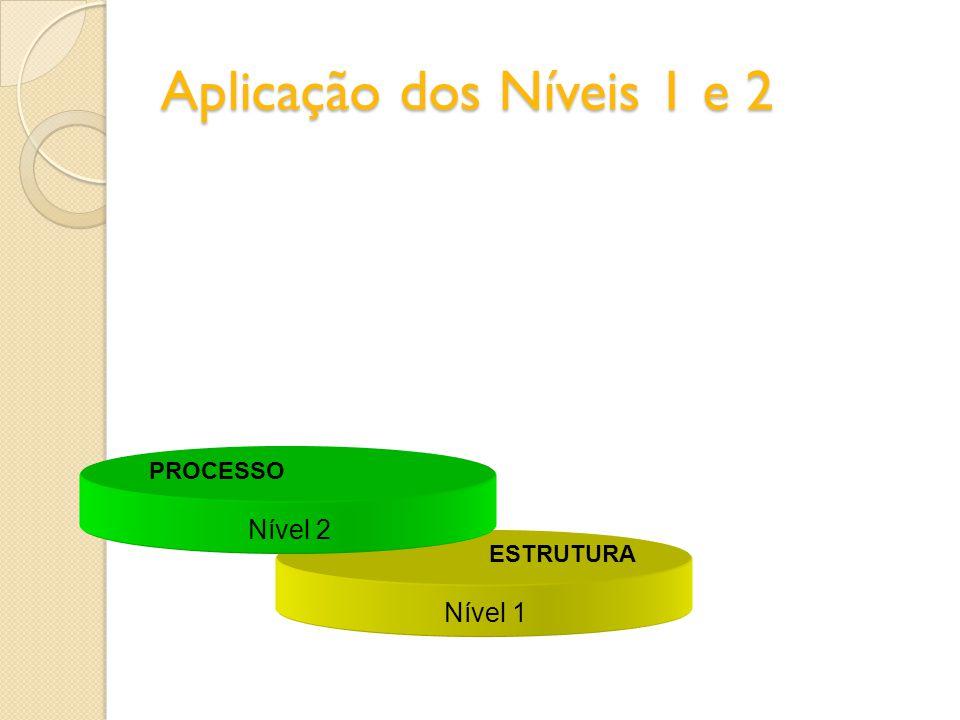 Aplicação dos Níveis 1 e 2 Nível 2 PROCESSO Nível 1 ESTRUTURA
