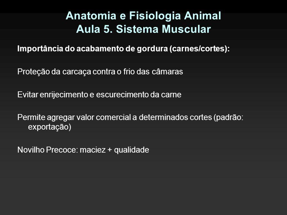 Anatomia e Fisiologia Animal Aula 5. Sistema Muscular