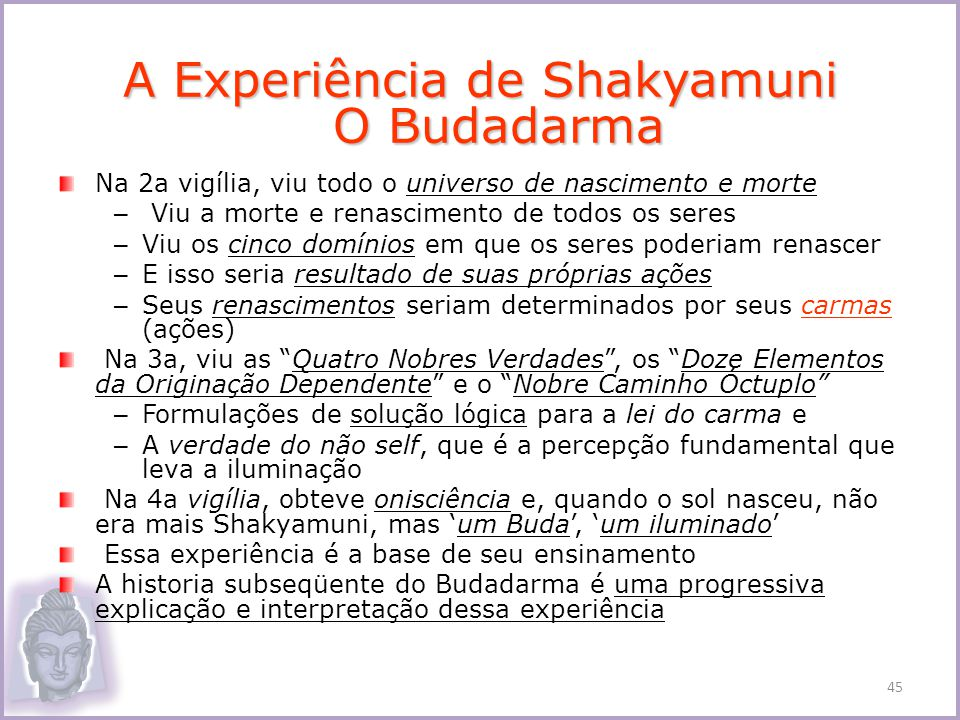 A Experiência de Shakyamuni O Budadarma