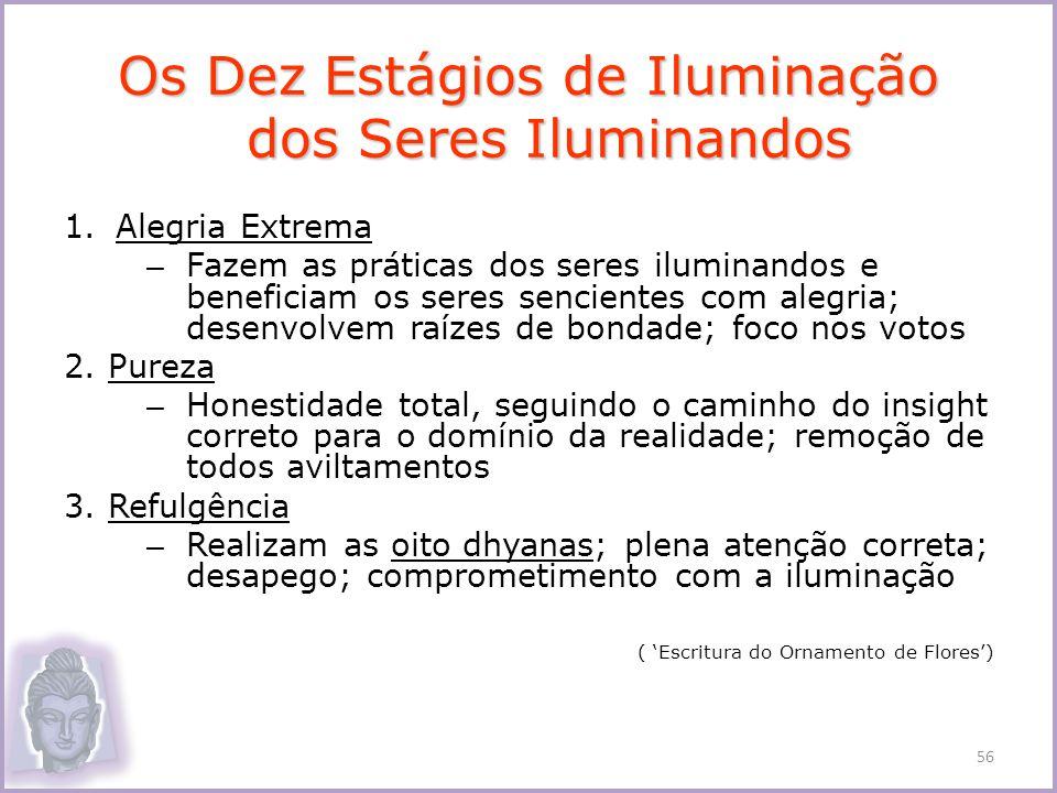 Os Dez Estágios de Iluminação dos Seres Iluminandos