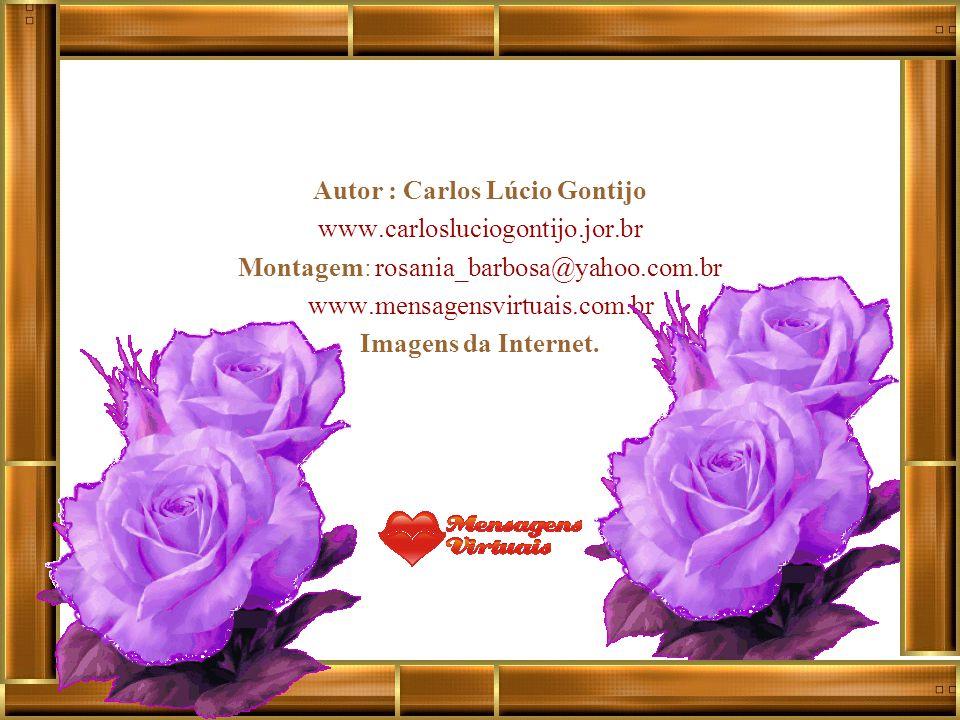 Autor : Carlos Lúcio Gontijo www.carlosluciogontijo.jor.br