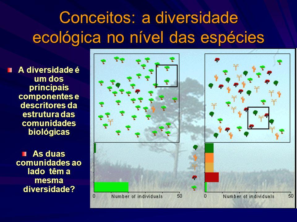 Conceitos: a diversidade ecológica no nível das espécies