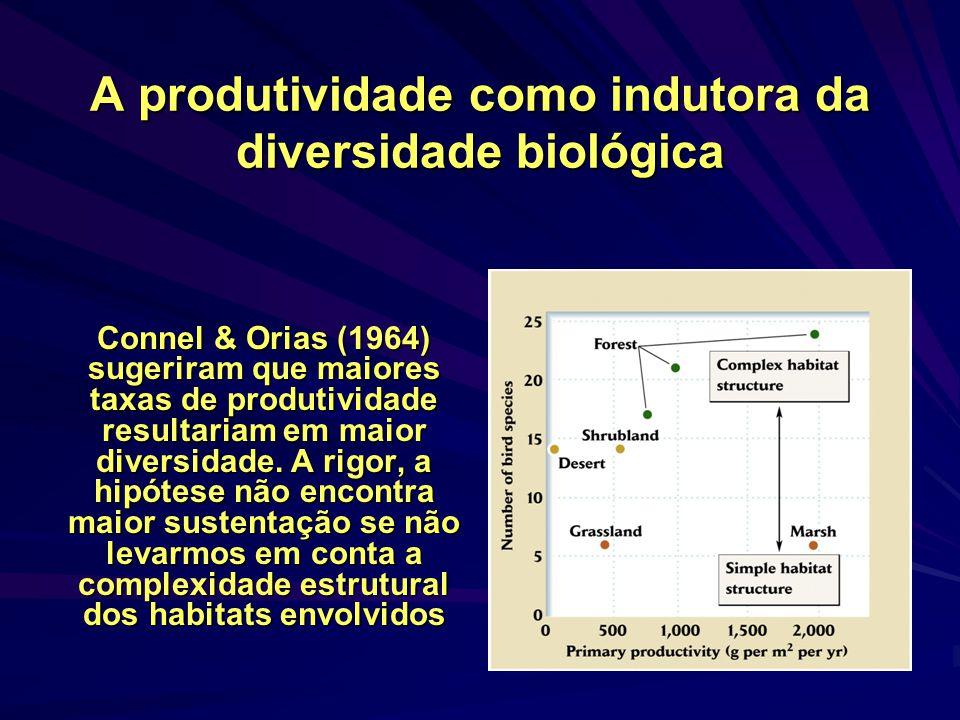 A produtividade como indutora da diversidade biológica