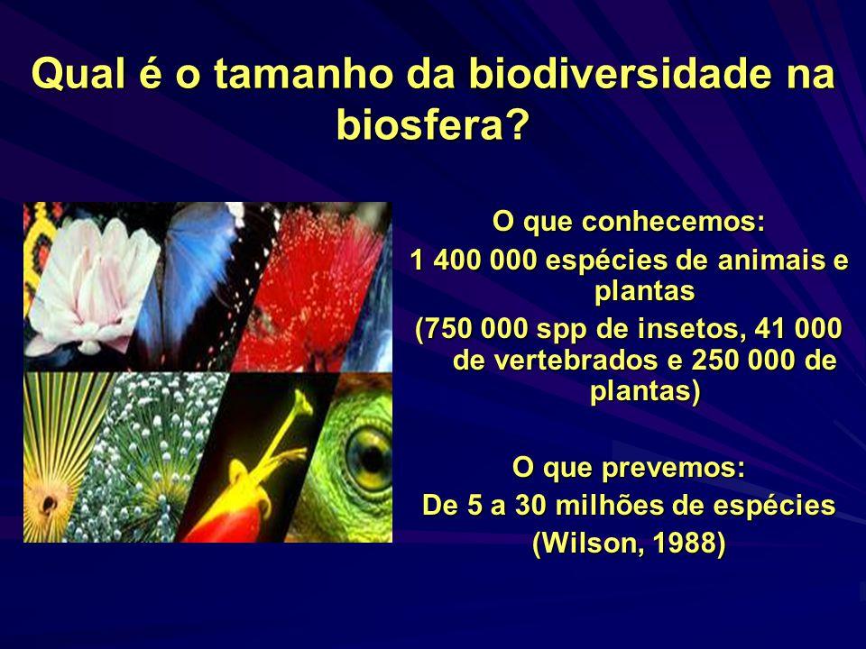 Qual é o tamanho da biodiversidade na biosfera