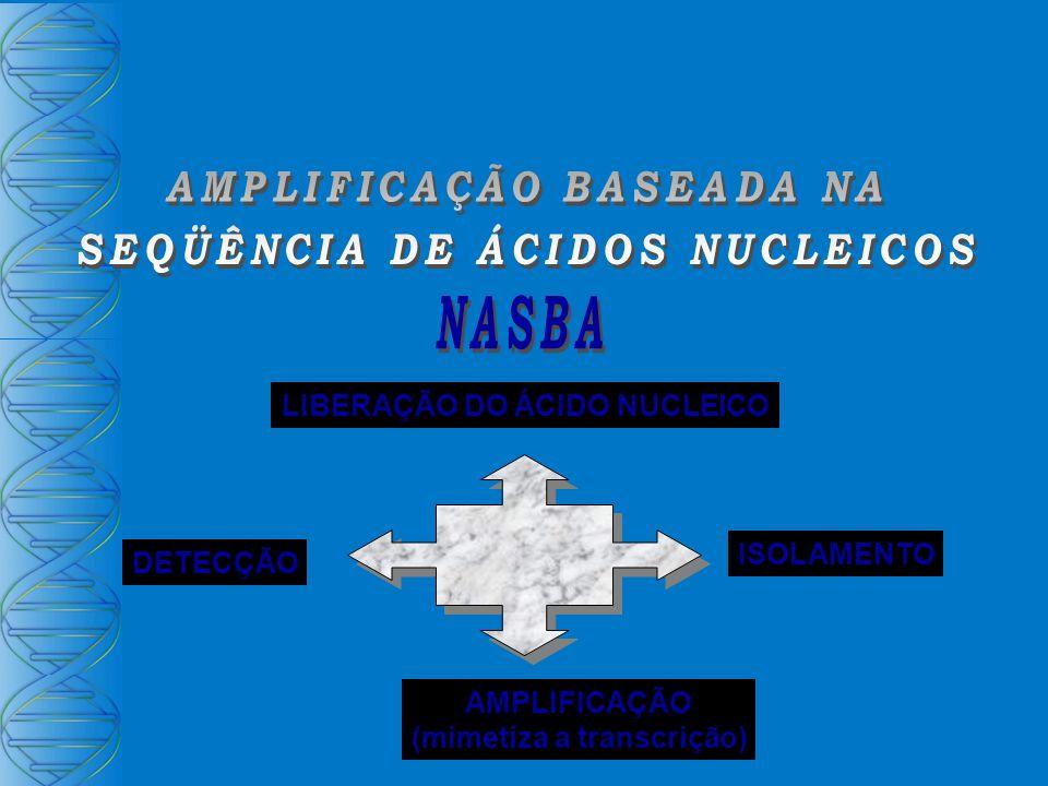 AMPLIFICAÇÃO BASEADA NA SEQÜÊNCIA DE ÁCIDOS NUCLEICOS NASBA