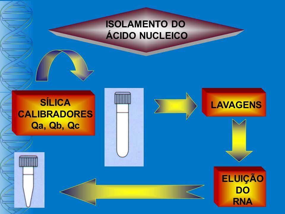 ISOLAMENTO DO ÁCIDO NUCLEICO SÍLICA CALIBRADORES Qa, Qb, Qc LAVAGENS ELUIÇÃO DO RNA