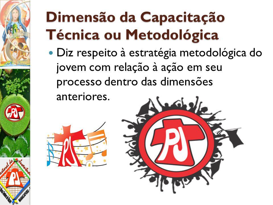Dimensão da Capacitação Técnica ou Metodológica