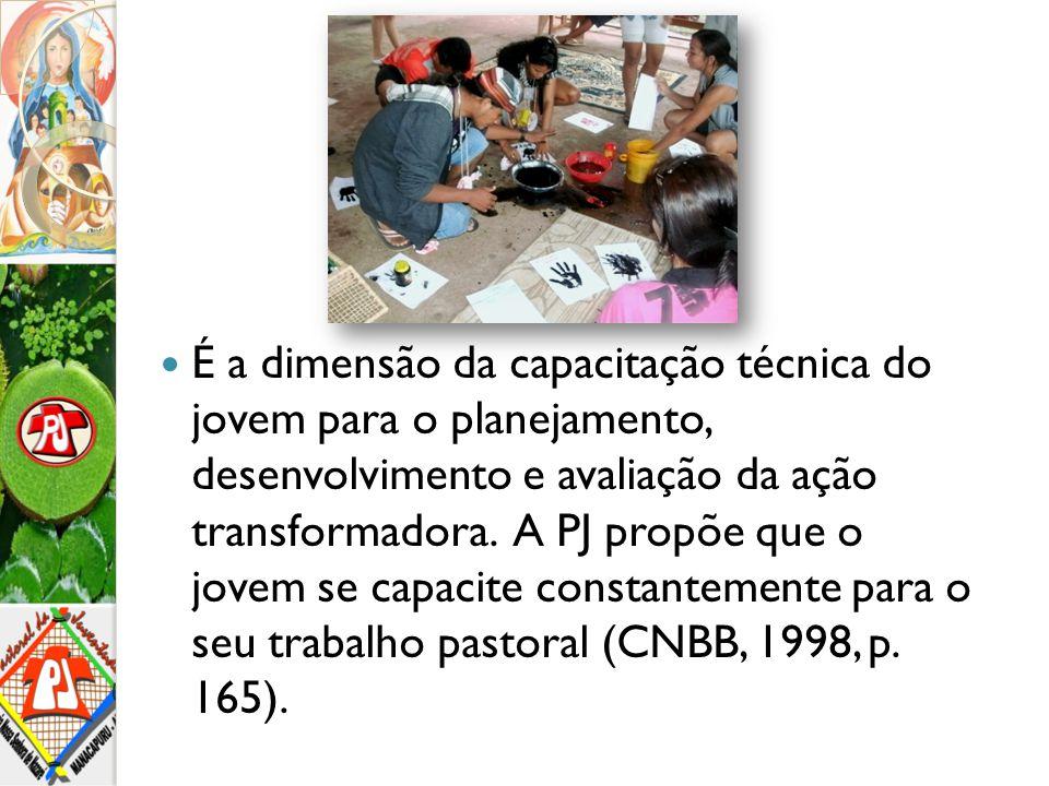 É a dimensão da capacitação técnica do jovem para o planejamento, desenvolvimento e avaliação da ação transformadora.