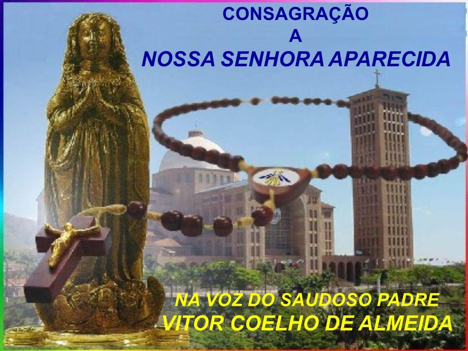 NOSSA SENHORA APARECIDA VITOR COELHO DE ALMEIDA