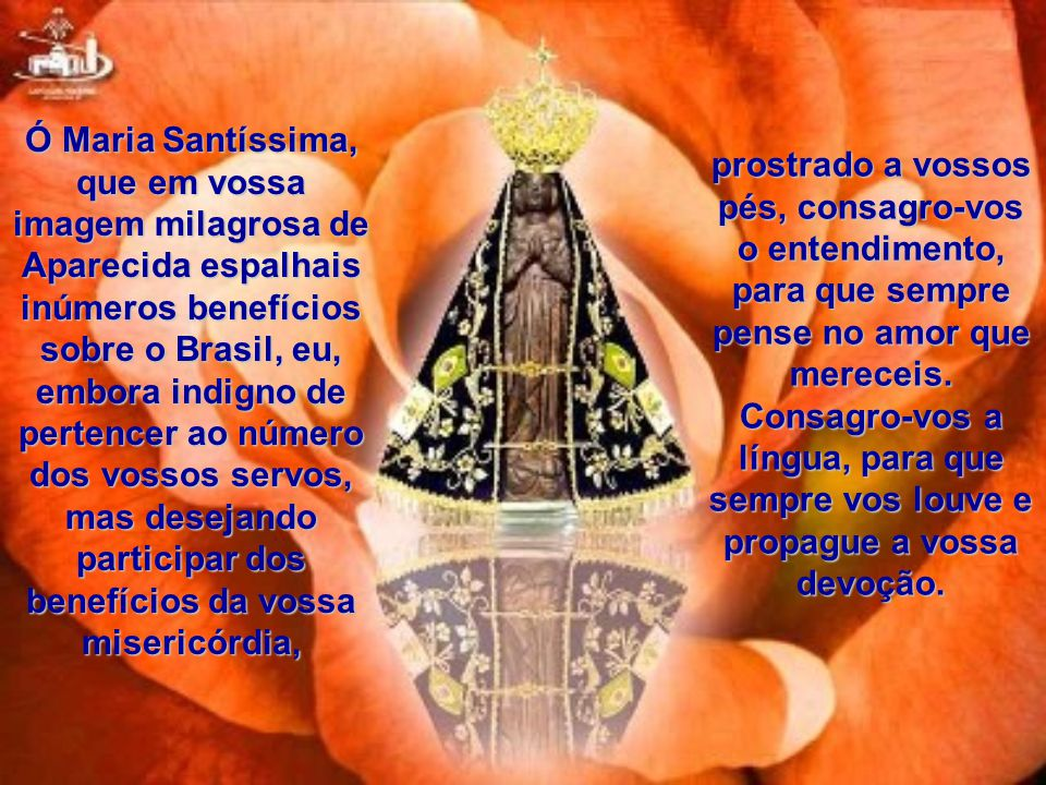 Ó Maria Santíssima, que em vossa imagem milagrosa de Aparecida espalhais inúmeros benefícios sobre o Brasil, eu, embora indigno de pertencer ao número dos vossos servos, mas desejando participar dos benefícios da vossa misericórdia,