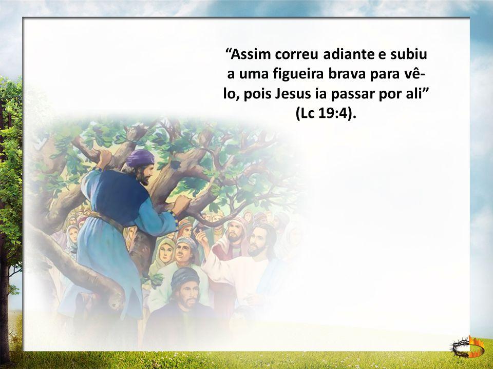 Assim correu adiante e subiu a uma figueira brava para vê-lo, pois Jesus ia passar por ali (Lc 19:4).