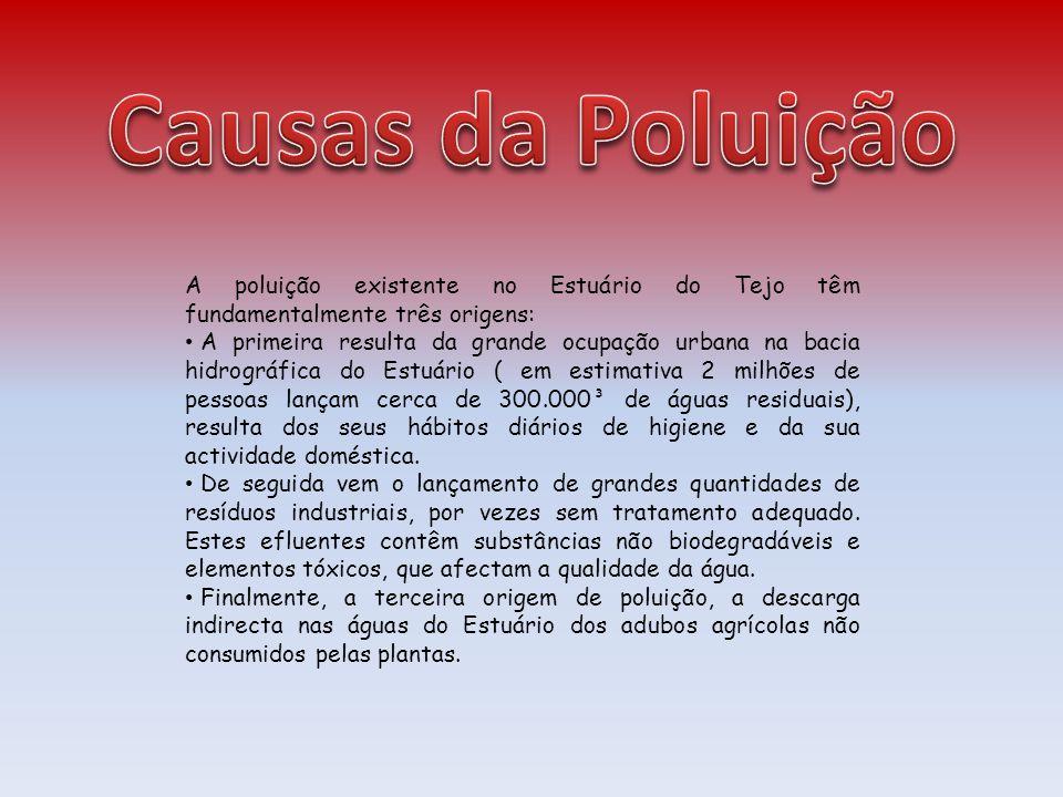 Causas da Poluição A poluição existente no Estuário do Tejo têm fundamentalmente três origens: