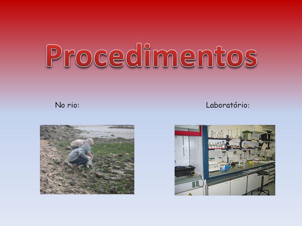 Procedimentos No rio: Laboratório: